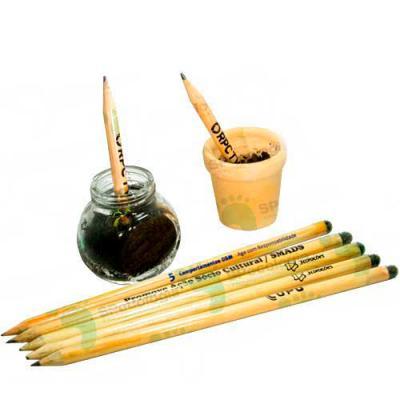 MT Brindes - Lápis Semente Ecológico personalizados