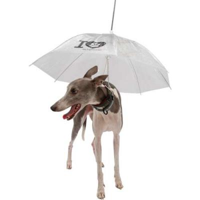 MatBrindes - Guarda chuva para Pet personalizado