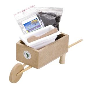 SP Ecologia - Kit cultivo com carrinho de mão artesanal de madeira.