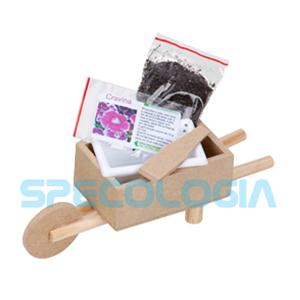 SP Ecologia - Kit para cultivo com carrinho de mão.