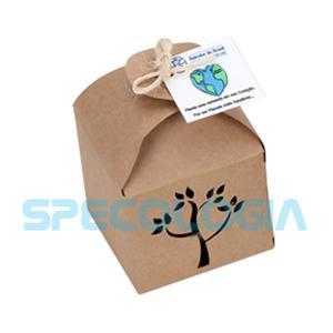 SP Ecologia - Kit para cultivo com embalagem.