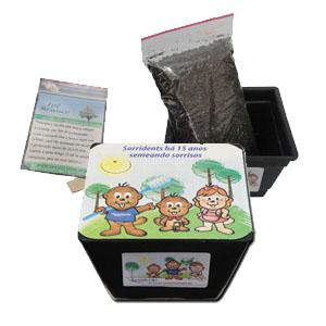 SP Ecologia - Kit para cultivo com sementes de Ipê amarelo.