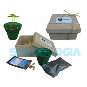 SP Ecologia - Kit para cultivo com caixa em MDF