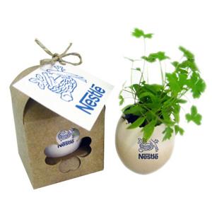 SP Ecologia - Ovo mágico com semente de flores e gravação personalizável.