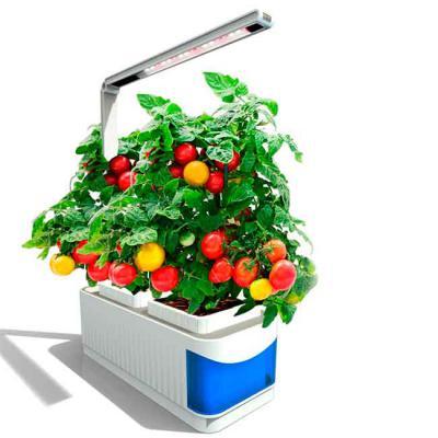 Claros Apoio - Sistema de cultivo hidropônico. Luz de led com braço ajustável de 360 graus. Dois vasos com substrato. Controle sensível ao toque. Três níveis de lumi...