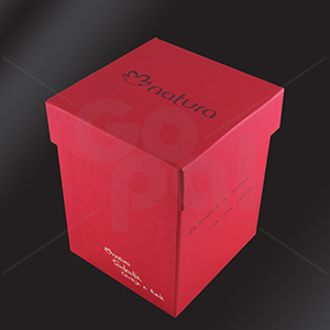 Craft House Brasil - Caixa de papelão rígido cartonada