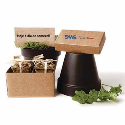YepUp Presentes Criativos - Kit de cultivo personalizado