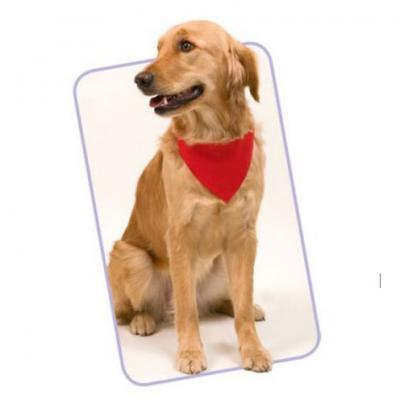 YepUp Presentes Criativos - Bandana em nylon para PETs
