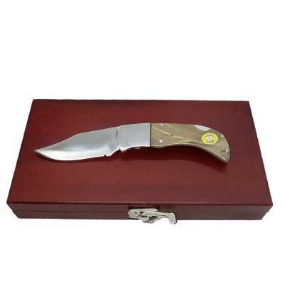 Âncora Brindes - Kit de luxo com canivete de trava com lâmina de aço inox cirúrgico de 8 cm de comprimento, cabo em chifre de boi polido, e presilha para uso de bolso...